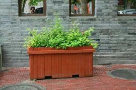 花箱、花盆、防腐木花箱、防腐木花盆、保定厂家供应