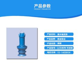 天津厂家直销QZB型潜水轴流泵,各种型号齐全