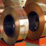 供应国产环保磷铜(C5210,C5191)