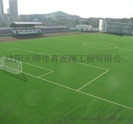 人造草坪足球场施工,人造草坪景观草铺设,人造幼儿园用草!