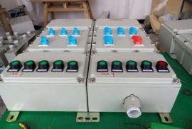 防爆照明动力配电箱生产厂家 端子箱