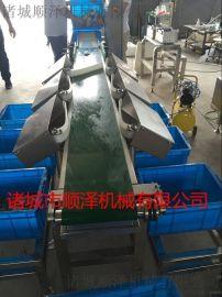 鲍鱼重量分级机  海参分级别机   鱼类分级别机