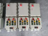 防爆动力开关箱电磁启动按钮控制箱2路电机保护起动配电箱