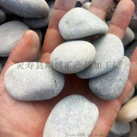 白色石子鹅卵石滤料铺面专用 建筑装饰鹅卵石