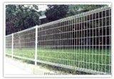 东兴双圈护栏网-绿化防护栏