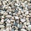 本格廠家直銷鵝卵石 水質淨化墊層卵石濾料
