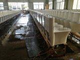 广东潮州十大陶瓷洁具马桶连体坐便器坐厕贴牌厂家直销