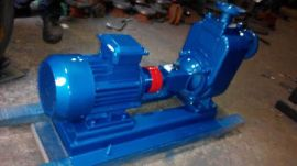 泉尔ZX自吸清水泵  自吸式离心泵