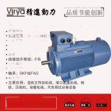 Virya精進品牌 Y2VP系列變頻調速電動機
