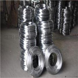 黑铁丝 电焊网丝 荷兰网丝厂家直销