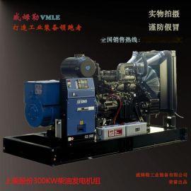 上柴100KW柴油发电机组 全铜100千瓦柴油发电机组 厂家报价威姆勒