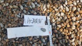 天然**鹅卵石滤料 找河北灵寿顺永鹅卵石厂