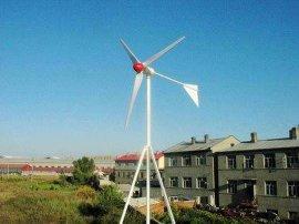 家用经济型500W小型风力发电机(TL-500)