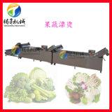 桑芽菜漂烫流水线,腾昇定制蔬菜漂烫机