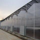 陽光板溫室造價預算 PC連棟陽光板溫室大棚建設施工
