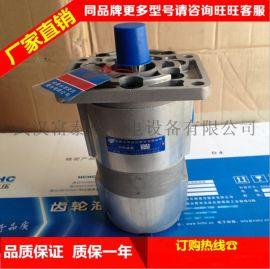合肥长源液压齿轮泵CBHT-F310-扁右(法兰)