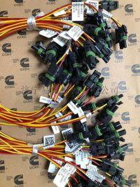康明斯NT855发动机PT泵线束3063683