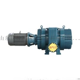 ZJ/ZJP系列罗茨真空泵