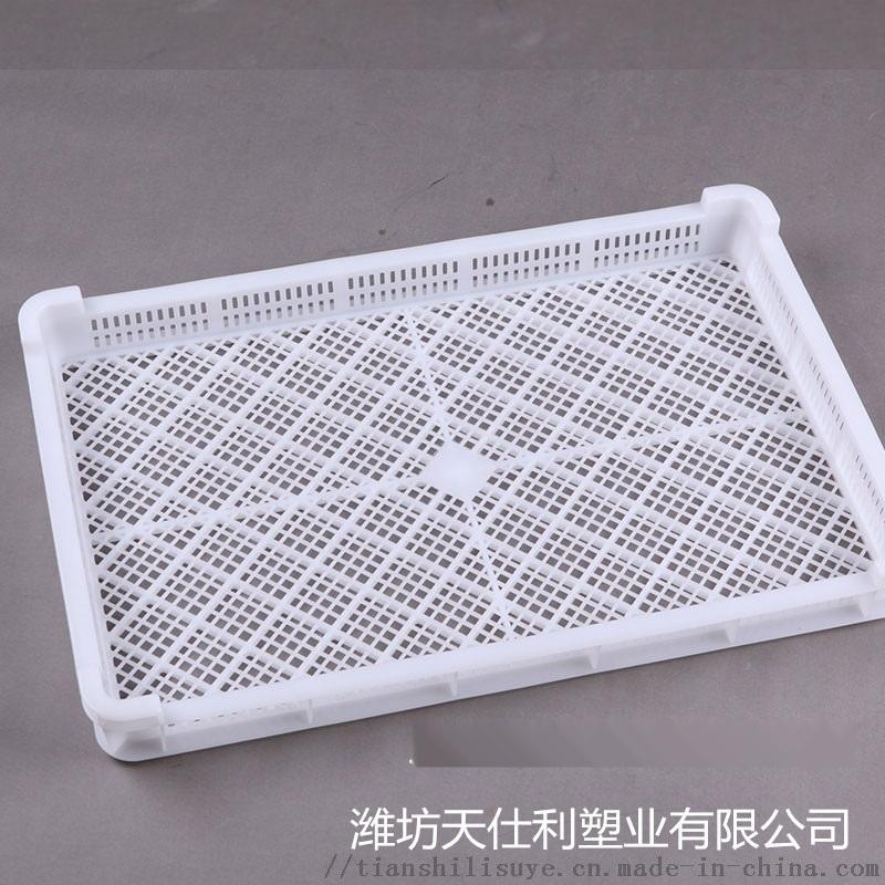 冷库速冻盘子 塑料单冻盘子 塑料单冻盘厂家报价