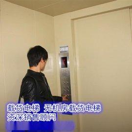 绍兴市悍马电梯,大吨位无机房载货电梯