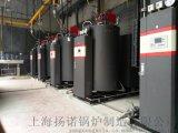 300kg   蒸汽发生器,免使用证冷凝自然循环式锅炉,燃气蒸汽锅炉