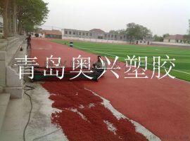 山东青岛全塑型塑胶跑道生产厂家