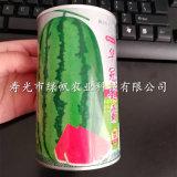 供應陝豐甜王華/冠超霸西瓜種子 西瓜嫁接苗