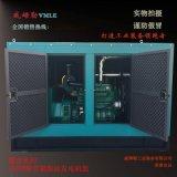 100千瓦柴油靜音發電機組 100KW靜音箱發電機 廠家直銷