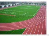 邢台中小学操场施工,EPDM跑道,塑胶场地厂家