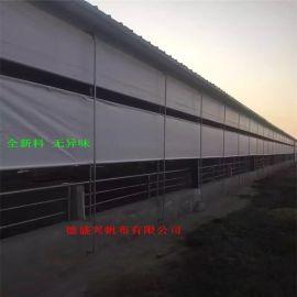 供应四川省纳森篷布,防水篷布加厚优质猪场卷帘布