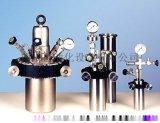 AMS气体分析仪