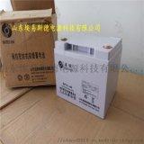 聖陽蓄電池12V42AH 聖陽電池SP12-42