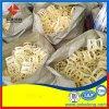 脱硫塔塑料鲍尔环填料各种材质聚丙烯鲍尔环大量现货