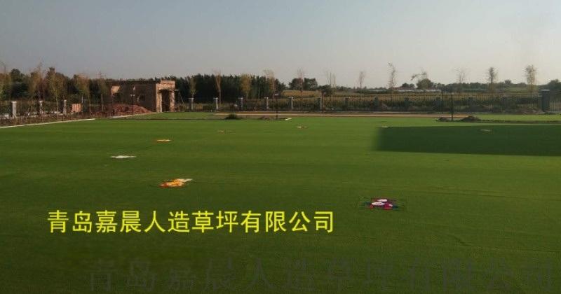 幼儿园人造草坪彩色彩虹仿真草坪地毯塑料假草坪