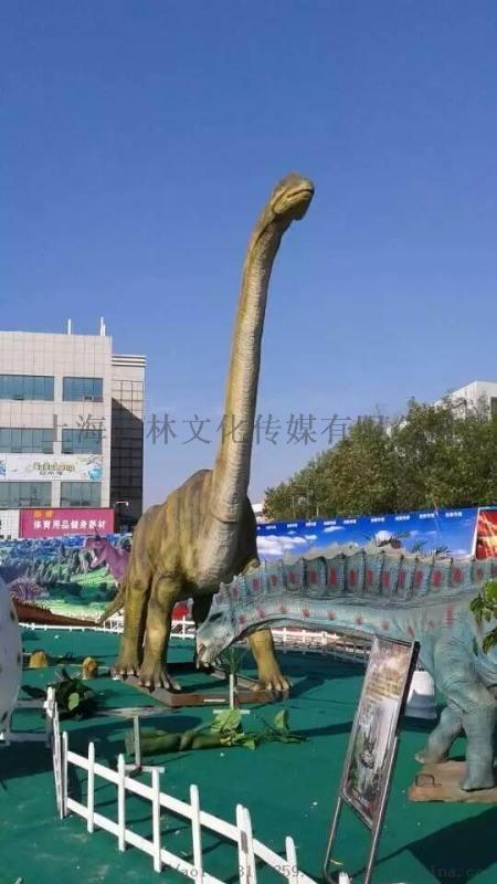 大型仿真恐龙 恐龙租赁 恐龙展览