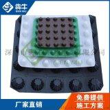 广东省2cm厚绿色塑料排水板防水滤水-滤水板