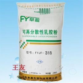 江苏可再分散性乳胶粉 厂家直销干混砂浆添加剂
