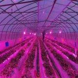 LED植物生长灯 25W花卉补光灯 LED射灯 全光谱植物补光灯 工厂直销