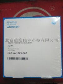 Whatman定性滤纸