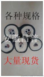 安徽昌普脫硫脫硝取樣管FHT-D42-B2Φ8-A-V120/150