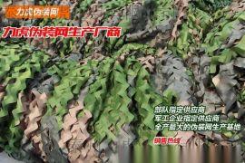 【泰州力虎】軍隊專用僞裝網 工程僞裝網 遮陽網