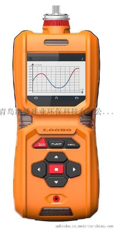 高清彩色屏LB-MS6X泵吸  一多气  测仪