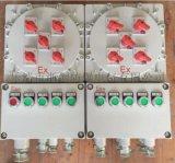 雙電源帶轉換開關防爆照明動力配電箱