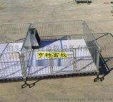养猪设备小猪断奶栏双筋塑料板仔猪床厂家报价