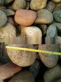 5-8厘米变压器鹅卵石 石家庄变压器鹅卵石厂家