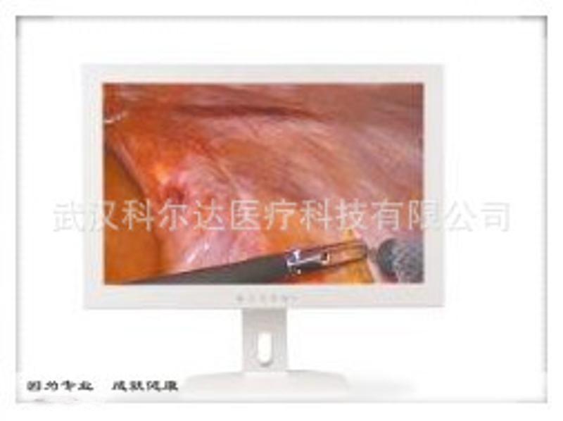 医用高清显示器 医用显示器报价 医用内窥镜监视器