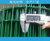 低价养殖鸡鸭鹅荷兰网 动物园围栏防护网片30m现货