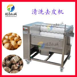 毛刷 土豆脱皮机 厂家
