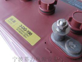 上海观光车巡逻车蓄电池环卫保洁车电瓶