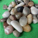 天然雨花石 水族魚缸裝飾石頭 3-5公分雨花石